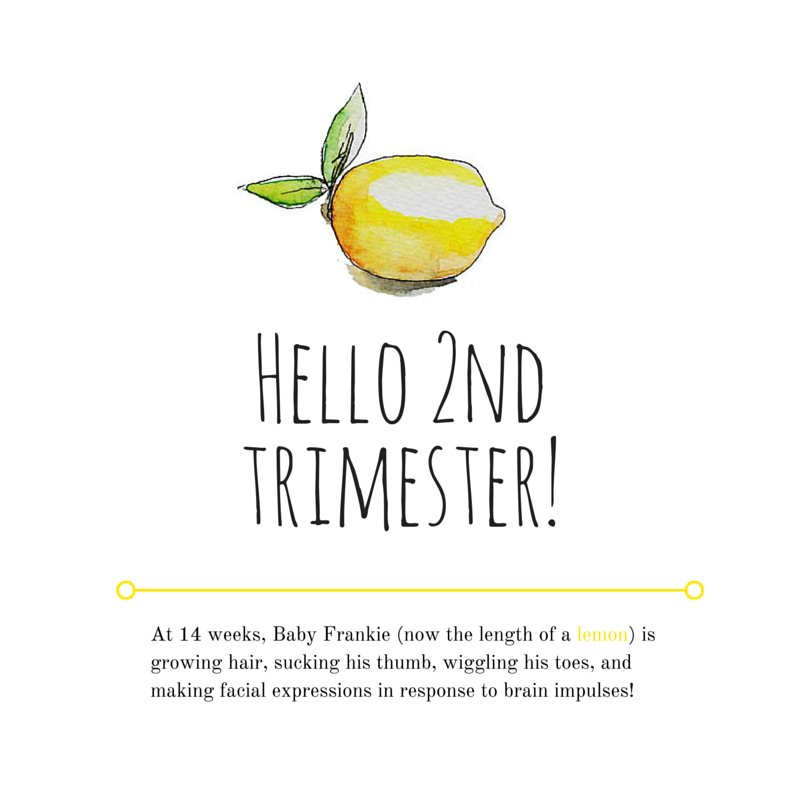 Hello 2nd Trimester